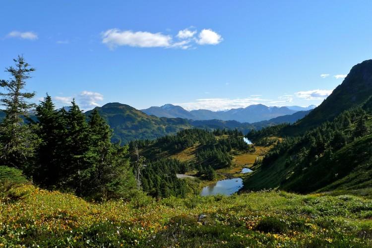 Joseph-Alpine-pond-1024x683